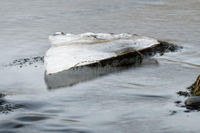 Sola masa de hielo flotante de hielo en un río imagenes de archivo
