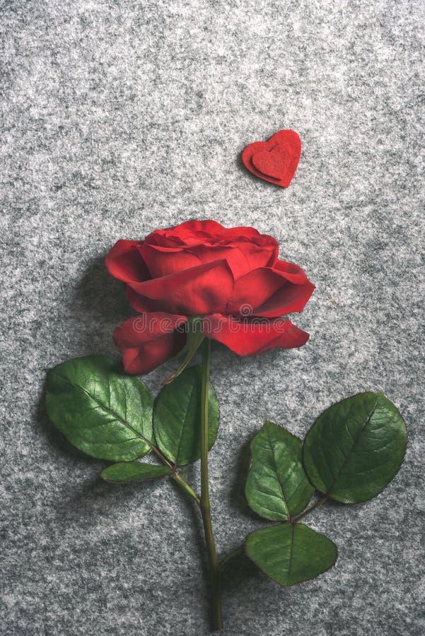 Sola rosa del rojo y dos corazones rojos imagen de archivo libre de regalías