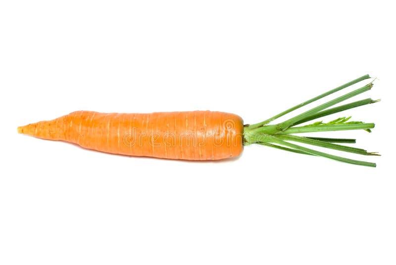 231 Zanahoria Sola Fotos Libres De Derechos Y Gratuitas De Dreamstime La zanahoria es una hortaliza de color naranja, blanca o roja y blanca e incluso de color violeta blancuzca por dentro (más rara vez) dependiendo su especie. 231 zanahoria sola fotos libres de