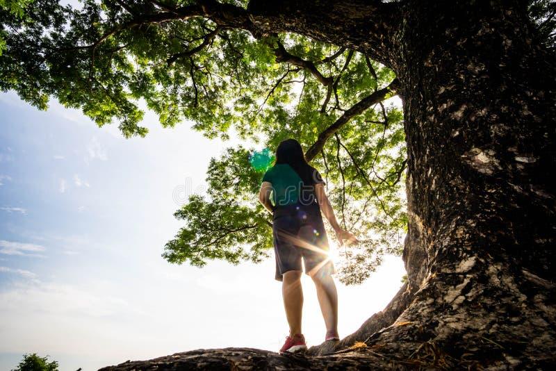 Solamente soporte de la mujer debajo del árbol imagen de archivo