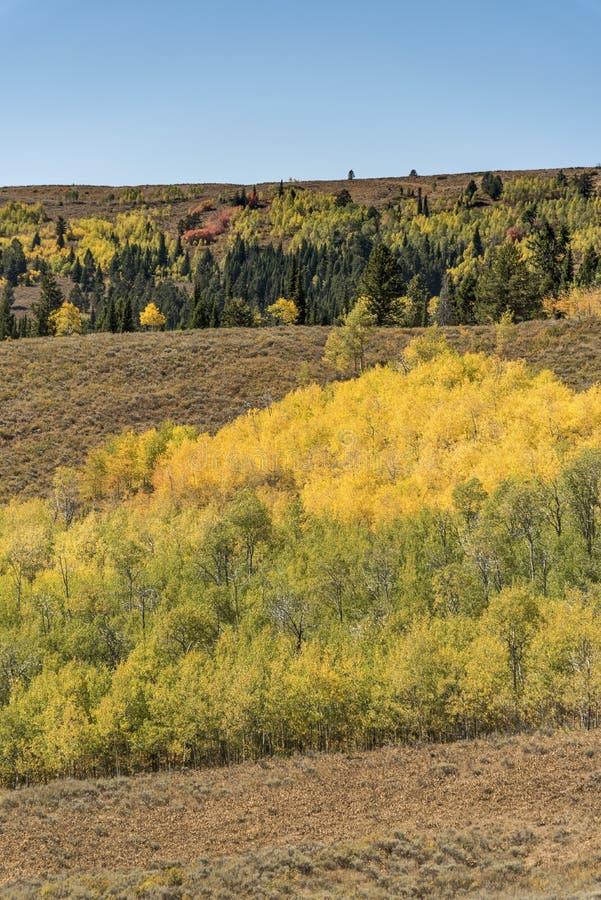 Solankowa Rzeczna przepustki Lander granica Wyoming obrazy stock