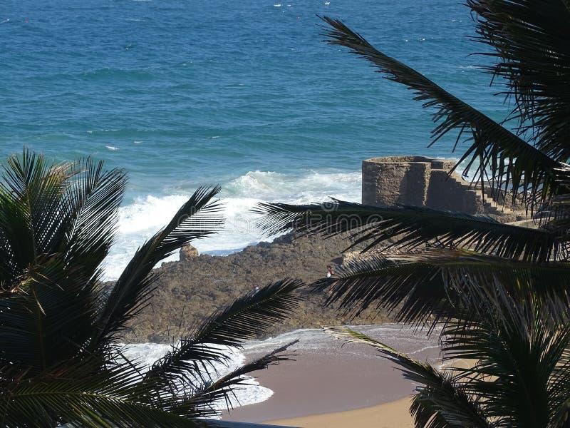Solankowa skały plaża zdjęcie royalty free