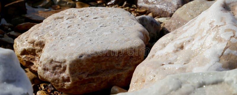 Solankowy crystallisation przy wybrzeżem Nieżywy morze, Jordania zdjęcie stock