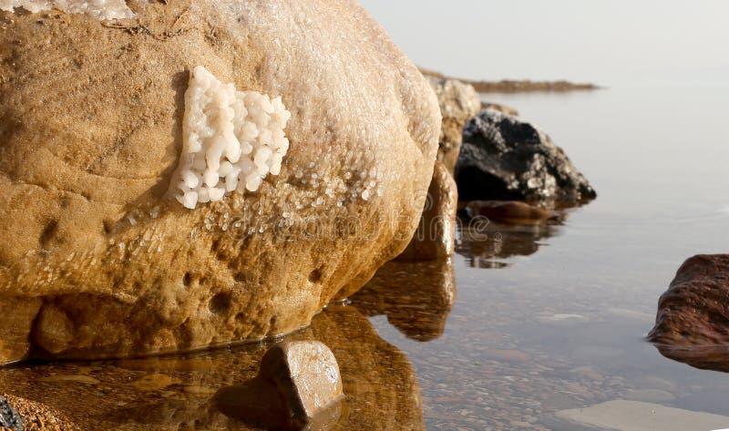 Solankowy crystallisation przy wybrzeżem Nieżywy morze, Jordania obrazy stock