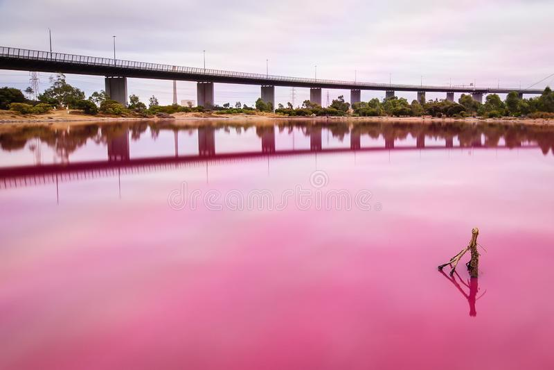 Solankowy różowy jezioro przy zachodnim brama parkiem fotografia royalty free