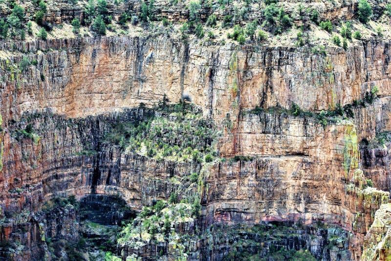 Solankowy Rzeczny jaru pustkowia teren, Tonto las państwowy, Gila okręg administracyjny, Arizona, Stany Zjednoczone fotografia stock