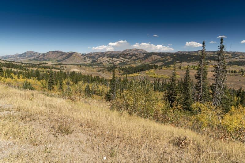 Solankowy Rzeczny przepustki Lander Odcina Wyoming zdjęcie stock