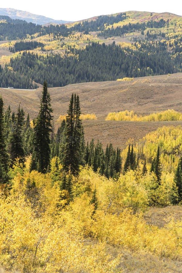 Solankowy Rzeczny przepustki Lander Odcina Wyoming obraz royalty free