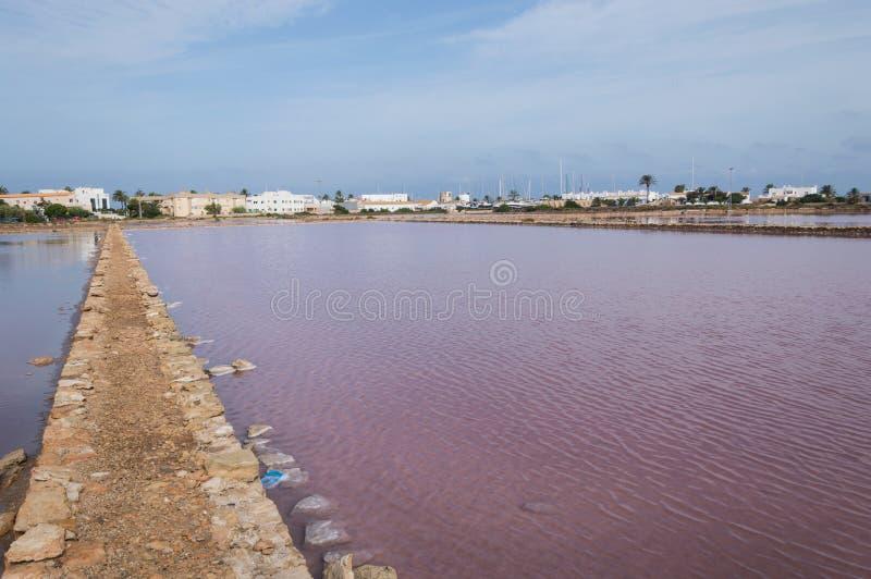 Solankowy staw Formentera zdjęcie royalty free