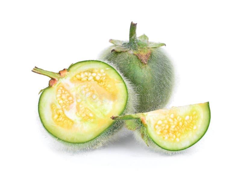 Solanum, Bolo Maka, islated на белой предпосылке стоковое фото