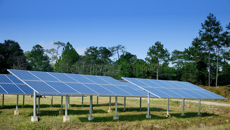 Solar cell in the forest, Sustainable concept stock image
