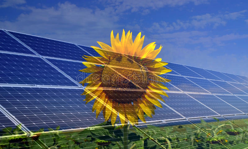 Download Solar panels stock photo. Image of energy, landscape - 25984392