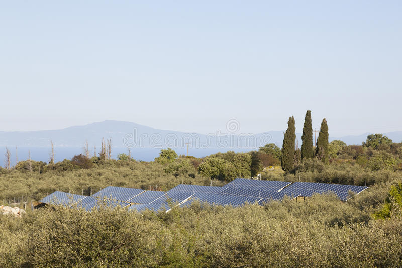 Solar panels between olive trees on part of greek peloponnese ca royalty free stock photo