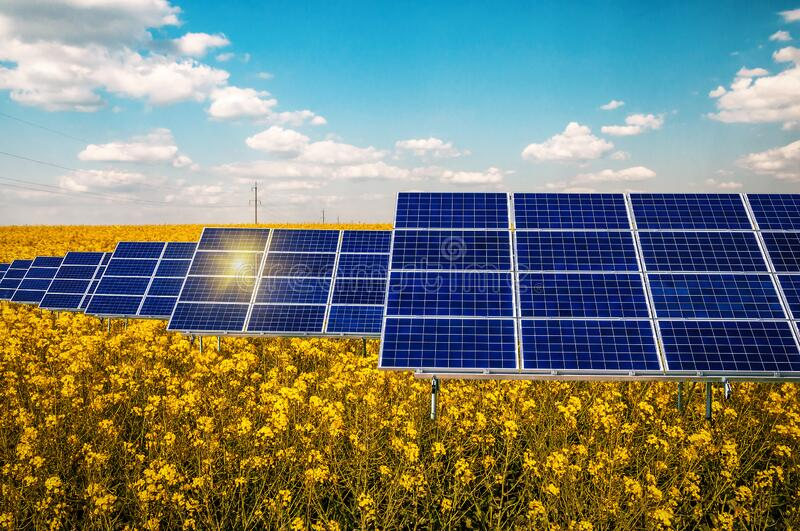 Solar panels in the rape field stock images