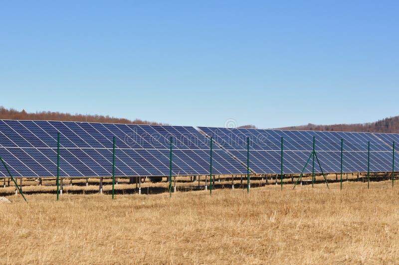 Solar panels for renewable energy