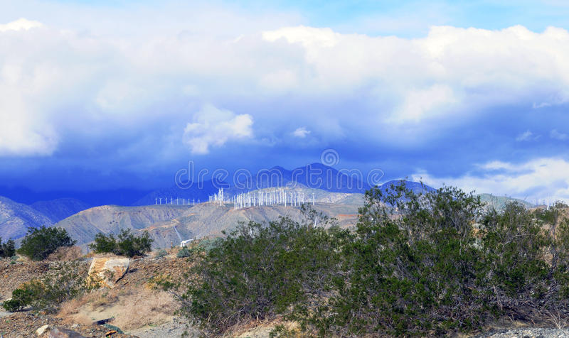 Solar Windmill Farm royalty free stock image