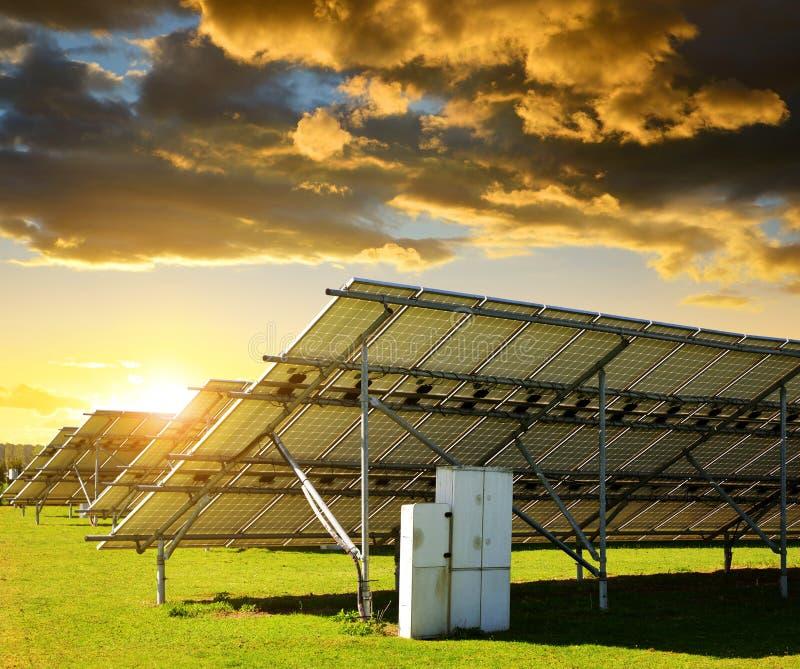 Solarenergieplatten in der Wiese bei Sonnenuntergang stockfotografie