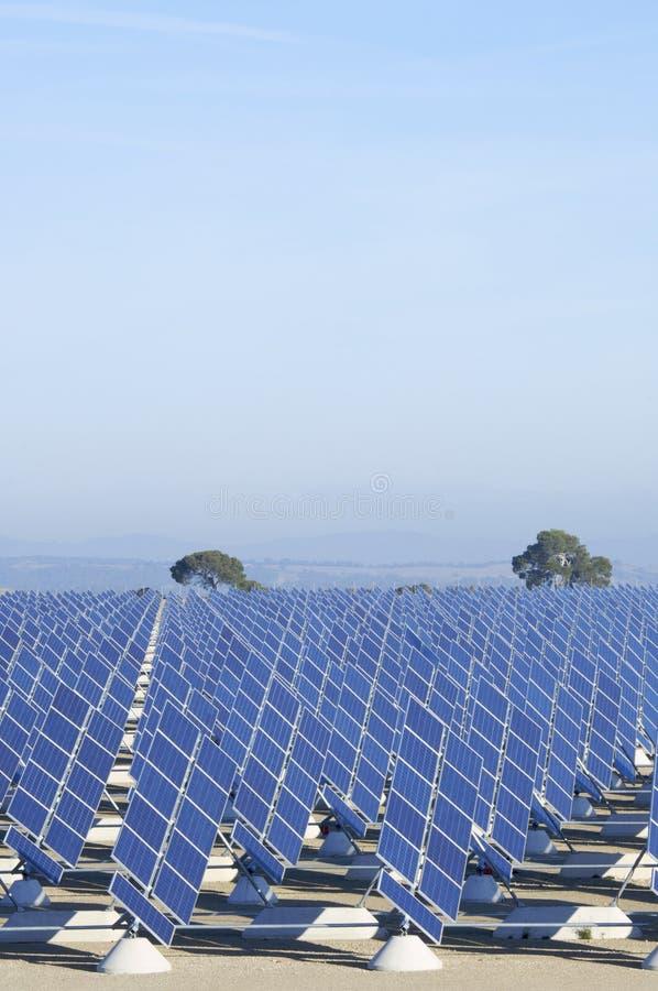 Solarfeld stockfotografie