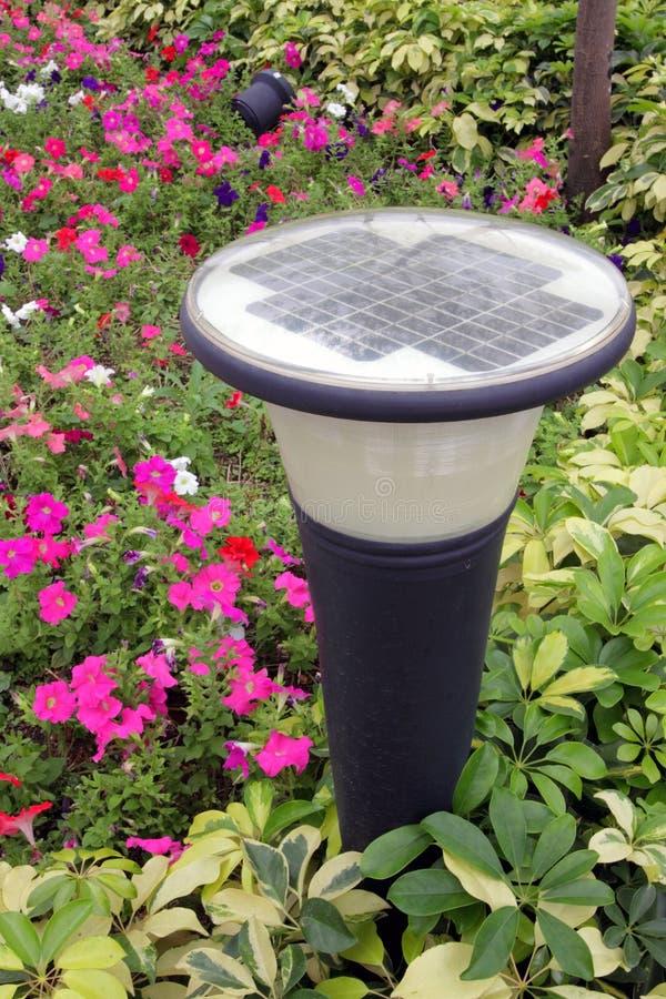 Solarrasen-Leuchte lizenzfreie stockbilder
