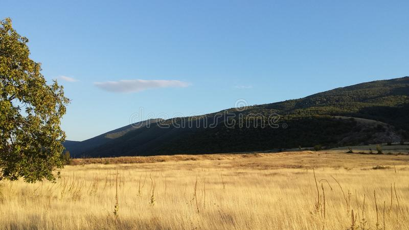 Solarwiesen stockfotografie