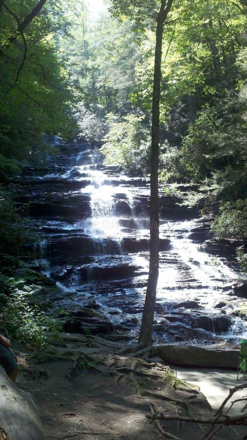 Solbelyst vattenfall i skog arkivbild