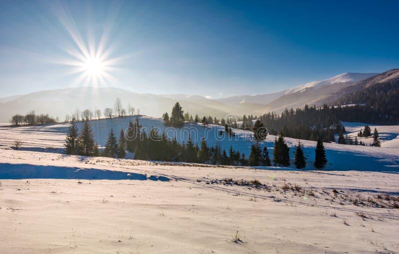 Solbristning över det härliga vinterlandskapet royaltyfria bilder