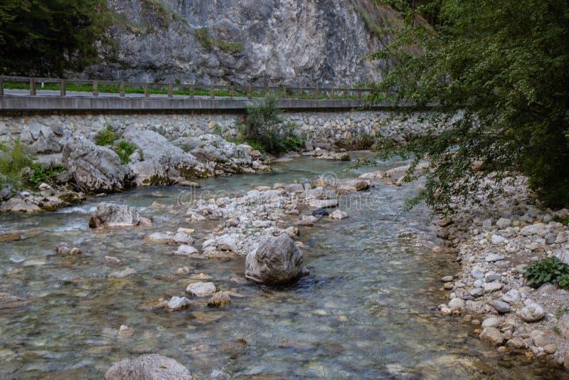 Solcava河看法在北斯洛文尼亚阿尔卑斯 图库摄影