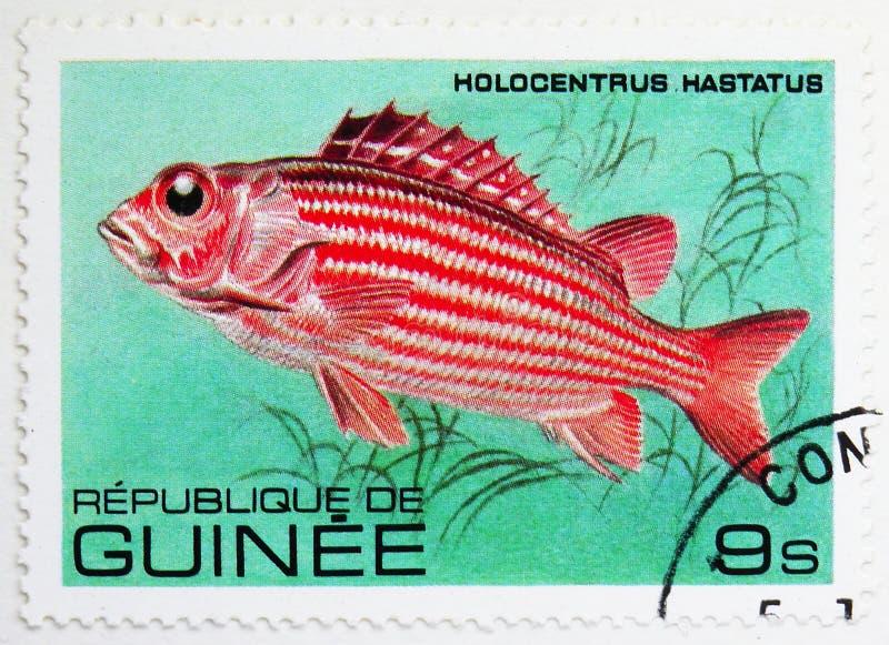 Soldado vermelho Fish (hastatus) do Holocentrus, serie dos peixes, cerca de 1980 imagens de stock royalty free