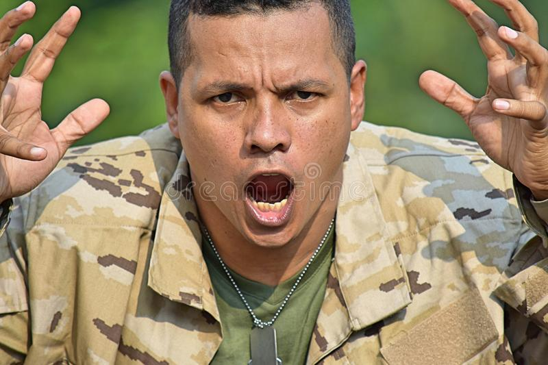 Soldat And Anger stockfotografie