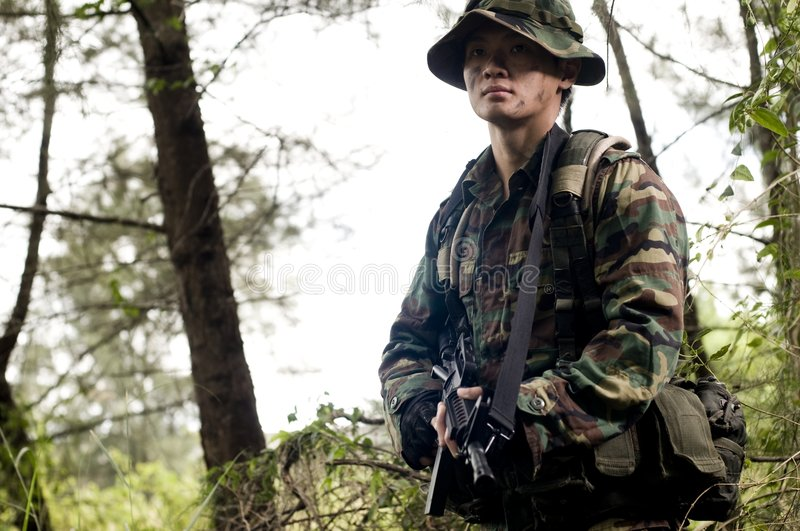 Soldat dans la jungle photo libre de droits