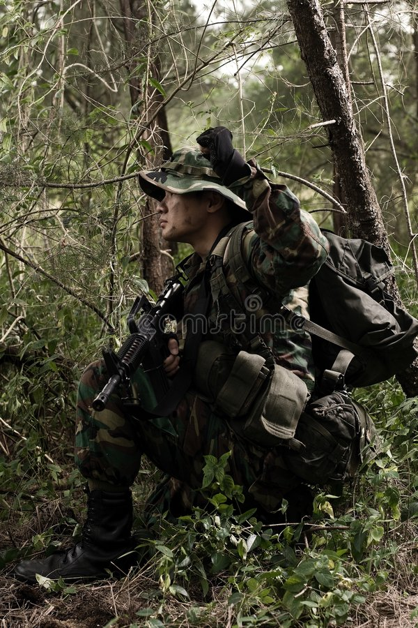 Soldat dans la jungle photographie stock libre de droits
