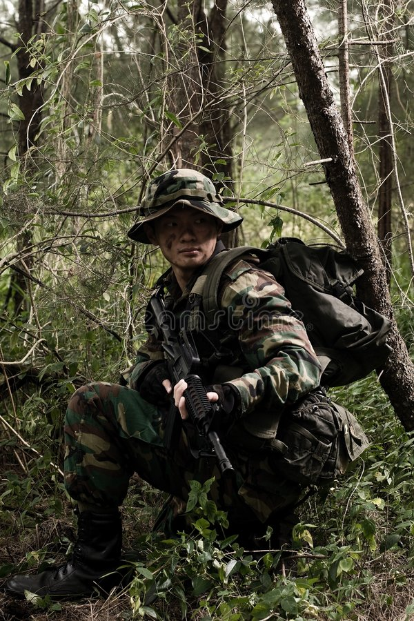 Soldat dans la jungle photo stock