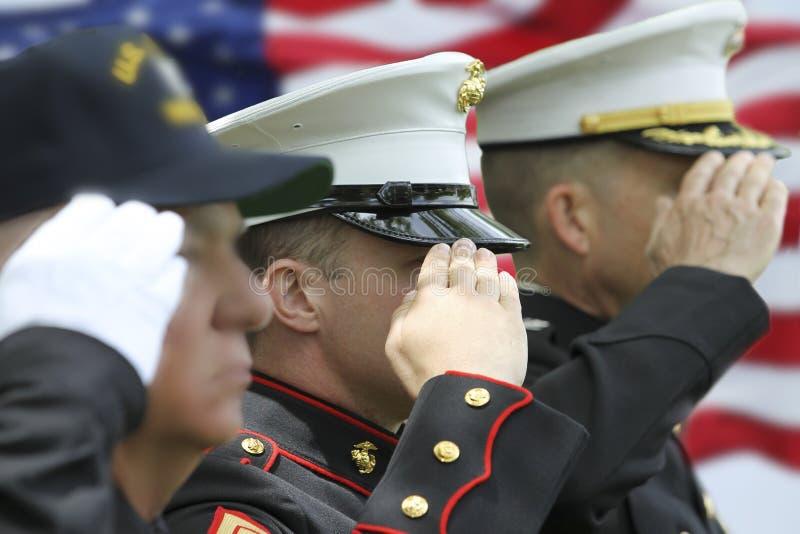 Soldat Saluting fotografering för bildbyråer