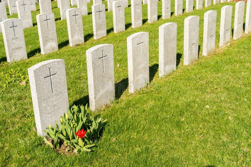 Soldat Tombs i den Montreal kyrkogården arkivbilder
