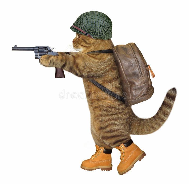 Soldato del gatto con il revolver immagini stock libere da diritti
