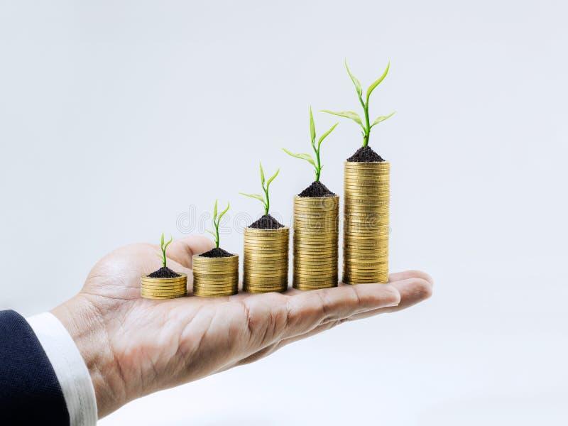 Soldi crescenti con l'albero sulla mano dell'uomo d'affari Commercio finanziario immagini stock libere da diritti