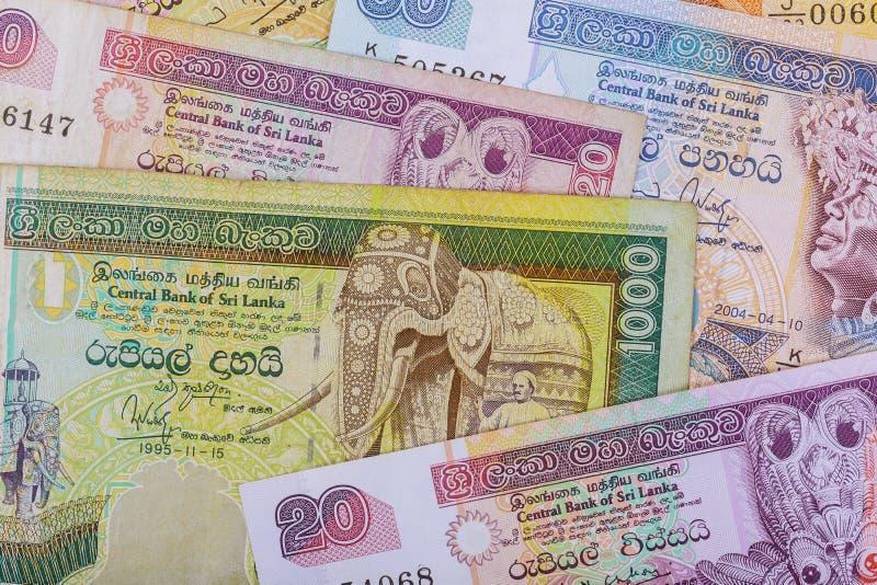 Soldi dallo Sri Lanka, varie denominazioni della composizione nella rupia immagine stock libera da diritti