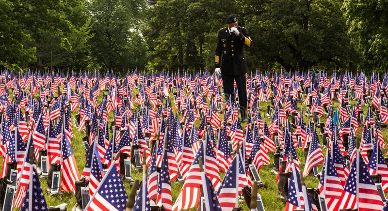 Soldier in Field of Flags on Memorial Day. Soldier honoring the fallen in field of red white and blue American flags on Memorial Day royalty free stock images