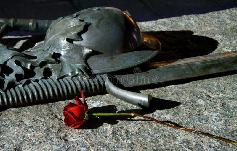 Download Soldier Rose Stock Image - Image: 520921