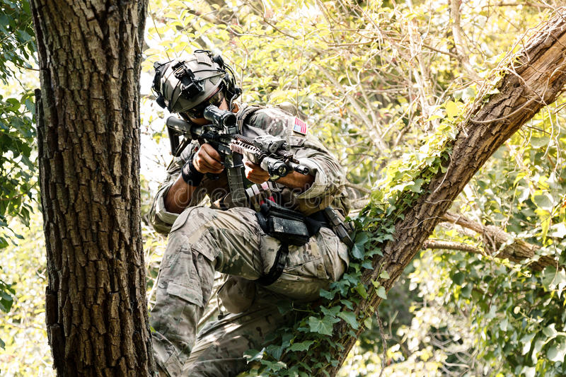 Soldier in uniform of the U.S. Army on the trees stock photos