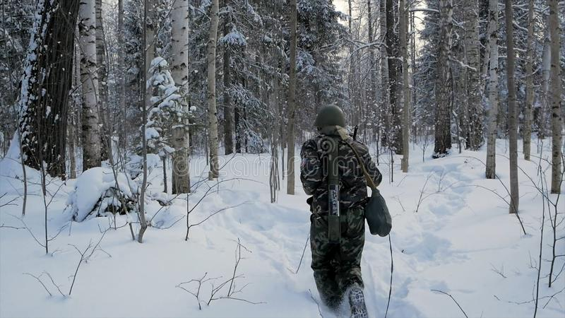 Soldier with weapons in cold forest. Winter warfare and military concept. Clip. Soldiers in winter forest on skis with stock photography