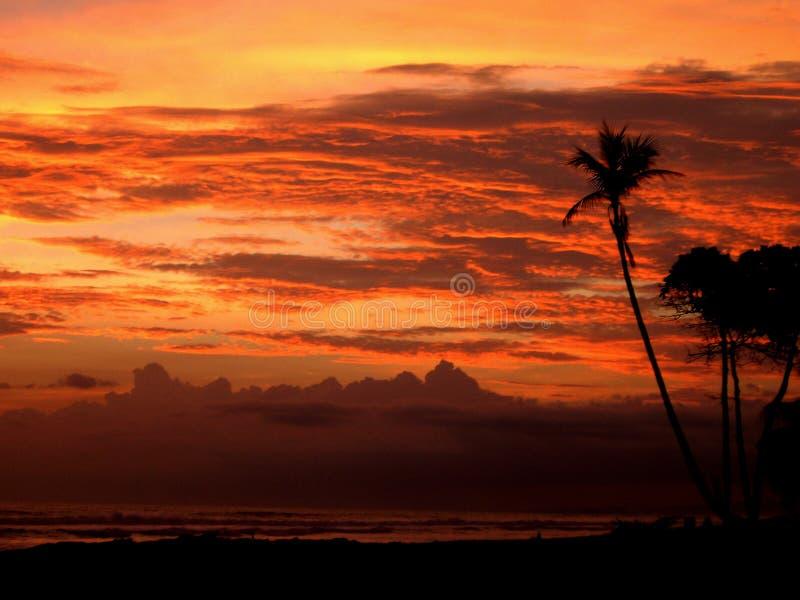 Sole arancione fotografia stock libera da diritti