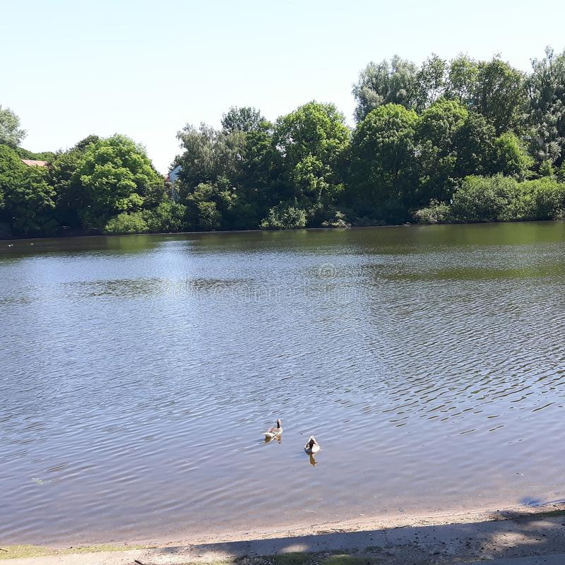 Sole del lago immagine stock libera da diritti