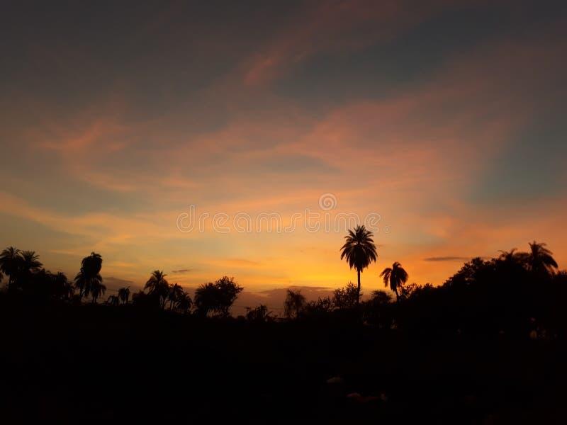Sole della natura fotografie stock