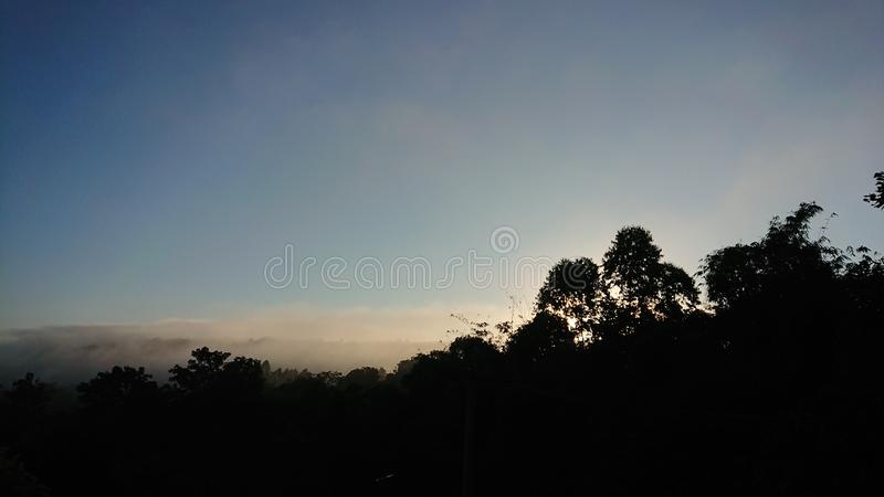 sole della nebbia fotografia stock libera da diritti