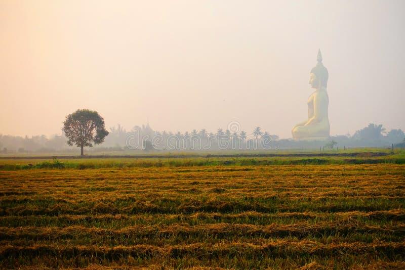 Sole di mattina che splende davanti al bello Buddha immagini stock libere da diritti
