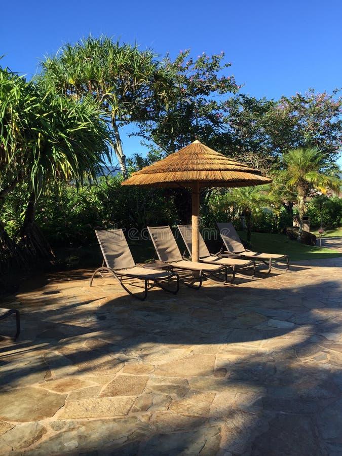 Sole di mattina di Palapa immagini stock