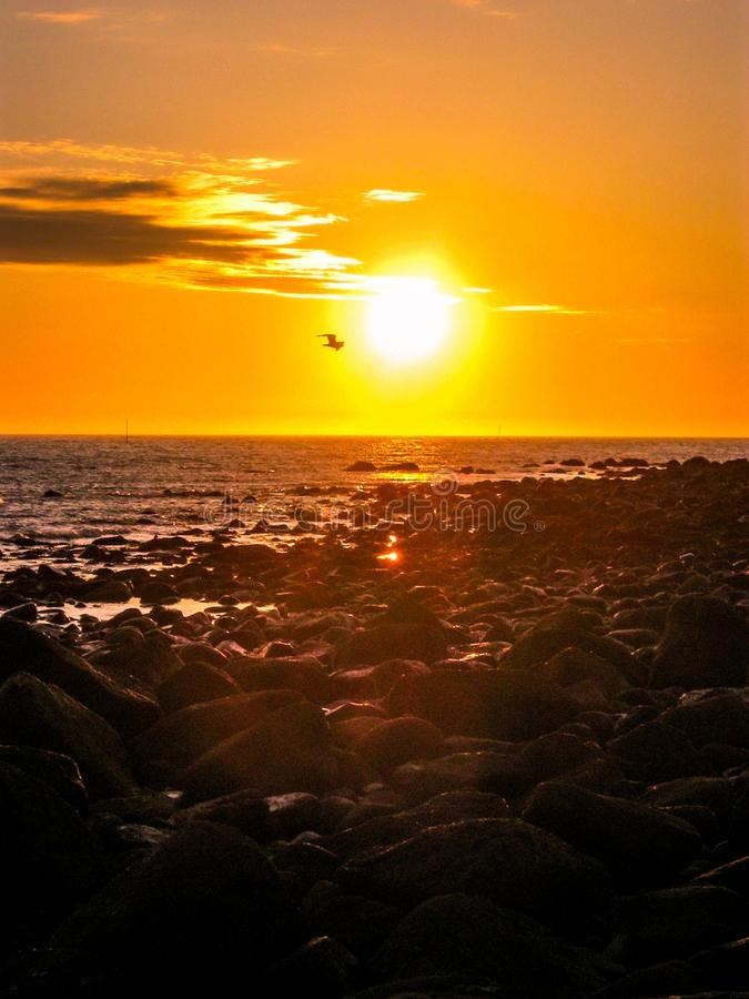 Sole di mezzanotte stupefacente in Norvegia fotografia stock