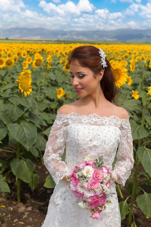 Sole e girasoli su un giorno delle nozze immagine stock libera da diritti