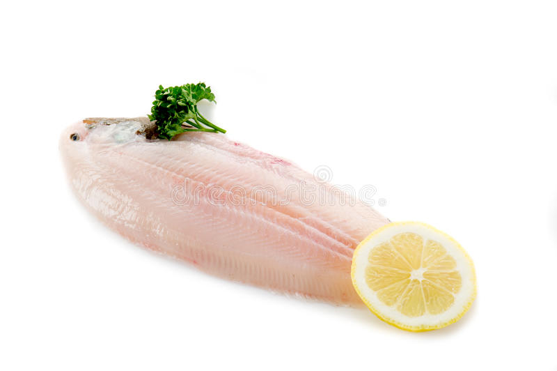 Sole fish ready to cook stock photos